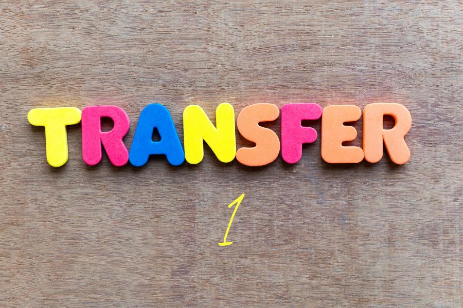 Transfer Pricing 1